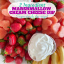 2 Ingredient Marshmallow Cream Cheese Snack Dip