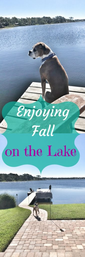 Enjoying Fall on the Lake