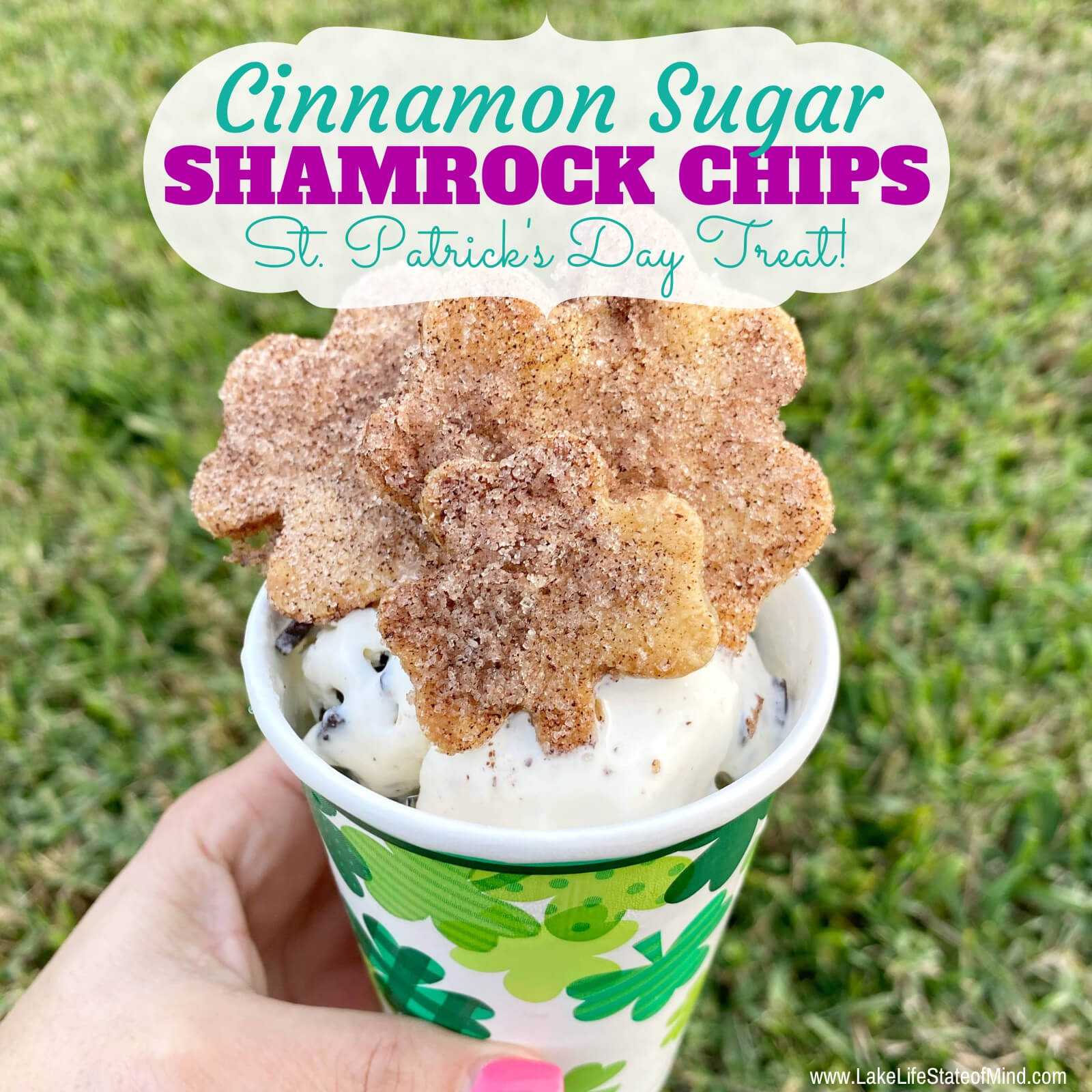 Shamrock Cinnamon Sugar Chips