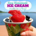 Easy Homemade Ice Cream Recipe in a Bag