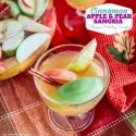 Cinnamon Apple and Pear Sangria