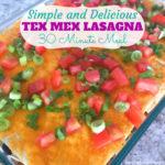 Tex Mex Lasagna