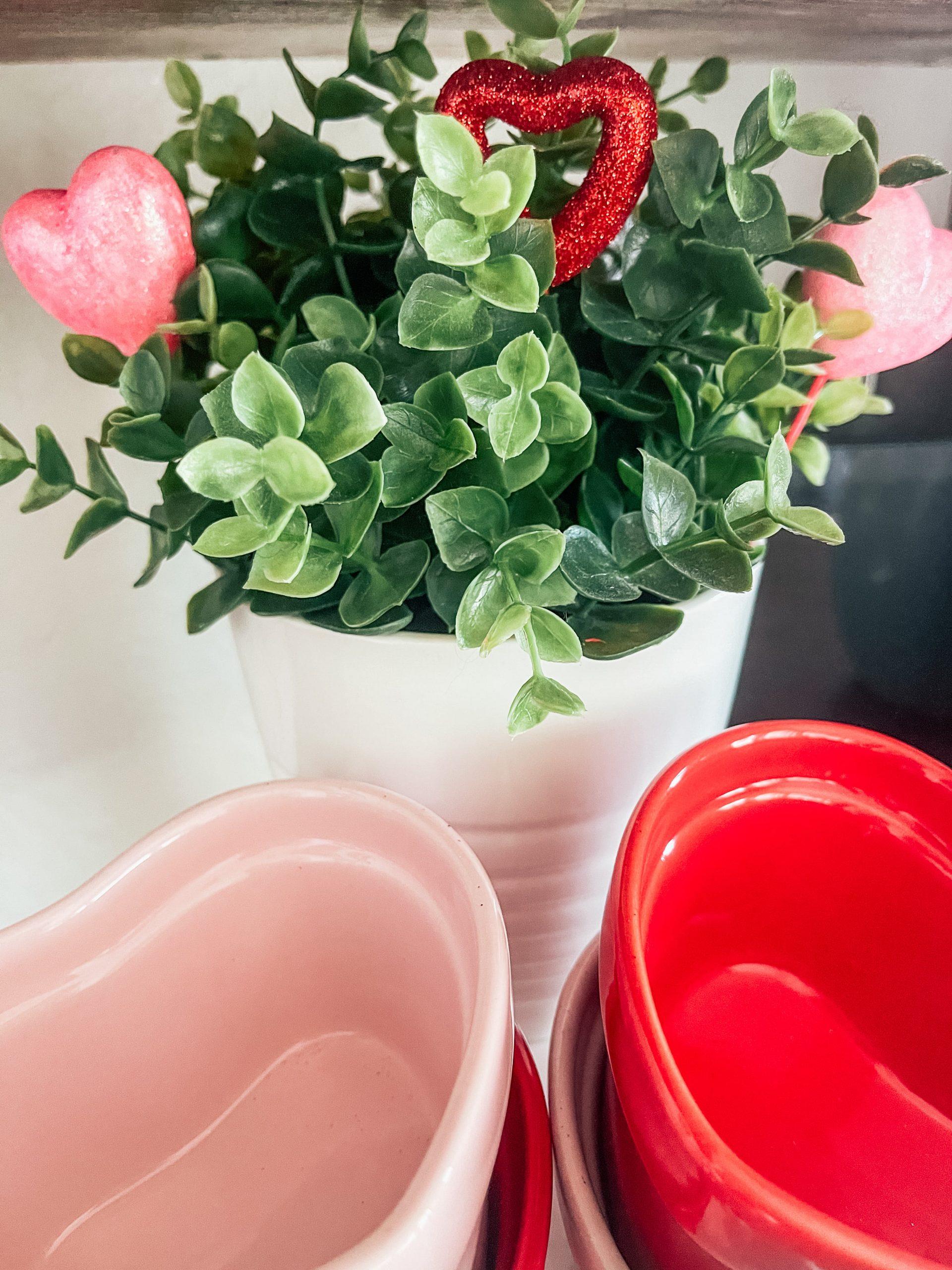 Valentine's Day picks in plant