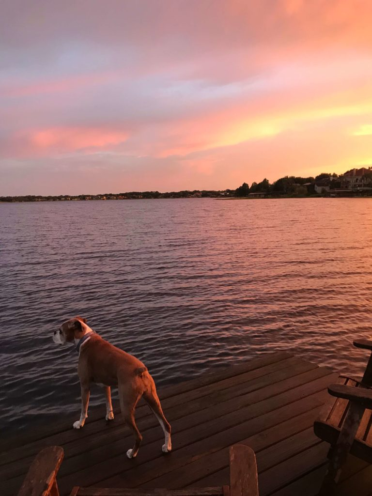 Lake life is the best life. I've created a list of 10 Things You Must Do At The Lake to inspire you to visit the lake this summer! #lakelife #lakelifestateofmind
