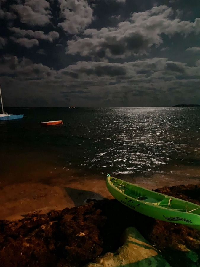 Bioluminescent Bay Puerto Rico