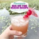 Pineapple Sex on the Beach Drink Recipe